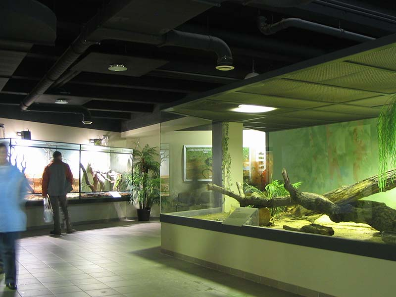 Exotarium Oberhof | Urlaubstipp Pension Oberhof