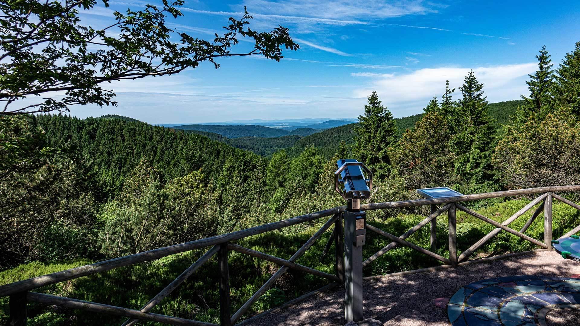 Rennsteiggarten, Blick über den Thüringer Wald
